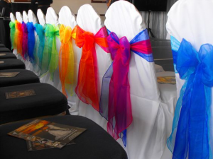 bright coloured chair covers